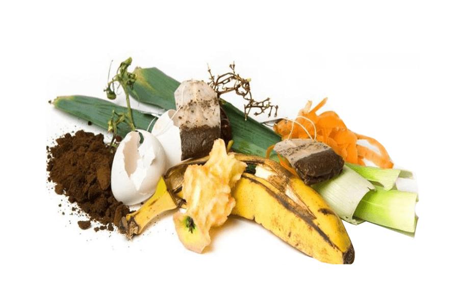 Resíduos comuns compostagem neles!